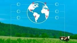 Fichas de seguridad en la agricultura