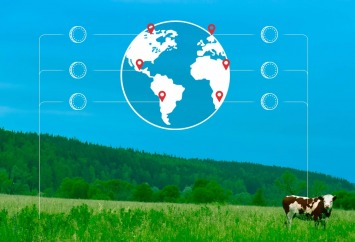 Security Tokens in agriculture