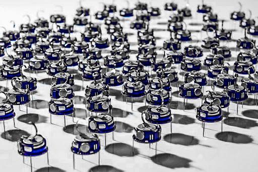 robotyka ławicy