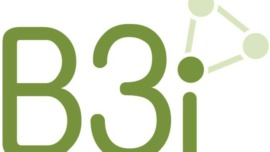 B3i Reinsurance